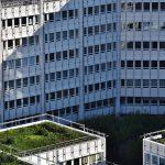 Zielony dach – modnie i z pomysłem