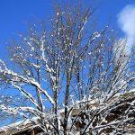 Jak przygotować dom na zimę